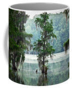 North Florida Cypress Swamp Coffee Mug
