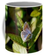 Northern Blue Coffee Mug