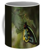 Northern Butterfly Coffee Mug