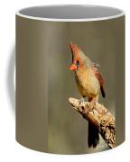 Northern Cardinal Cardinalis Cardinalis Coffee Mug