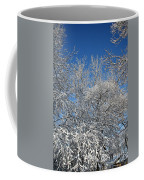 Northern Colors Coffee Mug