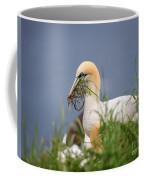 Northern Gannet Gathering Nesting Material Coffee Mug