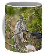 Northern Goshawk Brings Prey To Nest Coffee Mug
