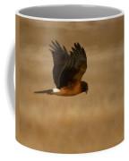 Northern Harrier Painterly Coffee Mug