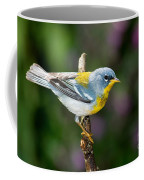 Northern Parula Warbler Coffee Mug