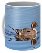 Northern Pintail Drake Coffee Mug