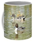 Northern Pintail Ducks  Coffee Mug