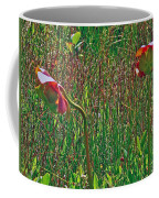 Northern Pitcher Plant In French Mountain Bog On Cape Breton Isl Coffee Mug