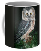 Northern Saw-whet Owl Coffee Mug by Sharon Duguay