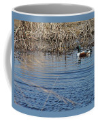Northern Shoveler Swim Coffee Mug