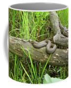 Northern Water Snake - Nerodia Sipedon Coffee Mug