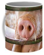 Nosey Coffee Mug