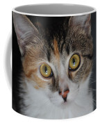 Nosey Lil Kitty Coffee Mug