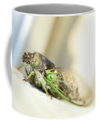 Not A Cute Bug Coffee Mug