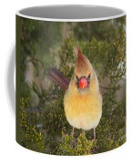 Not-so-angry Bird Coffee Mug