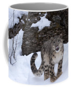 Not Too Close -  Please Coffee Mug
