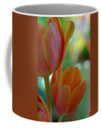 Nothing As Sweet As Your Tulips Coffee Mug by Donna Blackhall