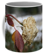 November Snow Rose Coffee Mug