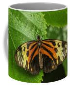 Numata Longwing Butterfly Coffee Mug