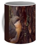 Nuthatch Up Close Coffee Mug
