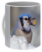 Nuts To This Winter Coffee Mug