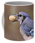 Nutty Bluejay Coffee Mug
