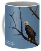 Nw Florida Bald Eagle Iv Coffee Mug
