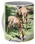 Nyalas At The Watering Hole Coffee Mug