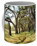 Oak Allee At Roseland Plantation  Coffee Mug
