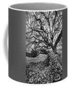 Oak And Ivy Bw Coffee Mug