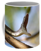 Oak Snake  Coffee Mug