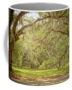 Oak Trees Draped With Spanish Moss Coffee Mug