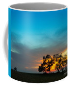Oaks And Sunset 2 Coffee Mug by Terry Garvin