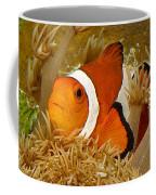 Ocellaris Clown Fish No 1 Coffee Mug