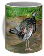 Ocellated Turkey Coffee Mug