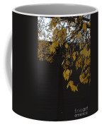 Ochre And Umber Coffee Mug