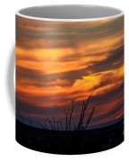 Ocotillo Sunset Coffee Mug by Robert Bales