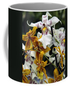 Gold And White Orchids Coffee Mug