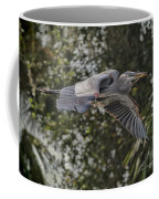 Off To The Nest 2012 Coffee Mug