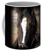 Oglala II Coffee Mug