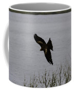 Oil Painting - A Large Bird Flying As Part Of The Birds Of Prey Show Coffee Mug