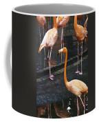 Oil Painting - Focus On A Single Flamingo Inside The Jurong Bird Park Coffee Mug