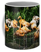 Oil Painting - Number Of Flamingos Inside The Jurong Bird Park Coffee Mug