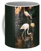 Oil Painting - The Head Of A Flamingo Under Water In The Jurong Bird Park In Singapore Coffee Mug