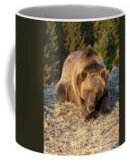 Ok -  It's Your Trail Coffee Mug