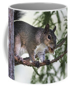 Ok You Caught Me Coffee Mug by Deborah Benoit