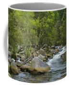 Okertal Coffee Mug