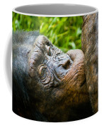 Old Chimp Coffee Mug