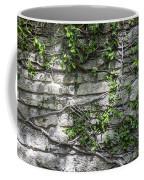 Old Coquina Wall Coffee Mug