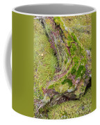 Old Decaying Lichens Moss Covered Taiga Tree Trunk Coffee Mug